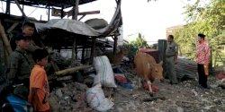 Bikin Resah Warga, Kandang Sapi di Al Markaz Tallo Dibongkar