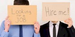 Ini 5 Pola Pikir Agar Survive Cari Kerja