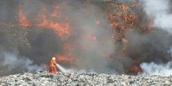 Dinkes Makassar: Lakukan Ini Jika Batuk dan Sesak Akibat Asap