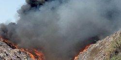 Kebakaran Landa TPA di Makassar, Ratusan Ekor Sapi Dievakuasi