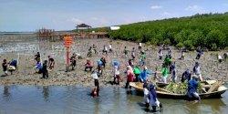 GenBI Tanam Ribuan Bibit Mangrove di Lantebung