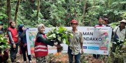 Program Penanaman 20.000 Bibit Kopi Pertamina Berdayakan Petani Kopi Dusun Cindakko Maros
