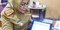 Mumpung di Rumah, Yuk Sukseskan Sensus Penduduk Online