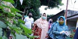 Ketua TP PKK Makassar Apresiasi Tanaman Kesehatan di Rappocini