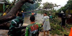 Hujan dan Angin Kencang, Banyak Pohon Bertumbangan di Jalan-jalan Makassar